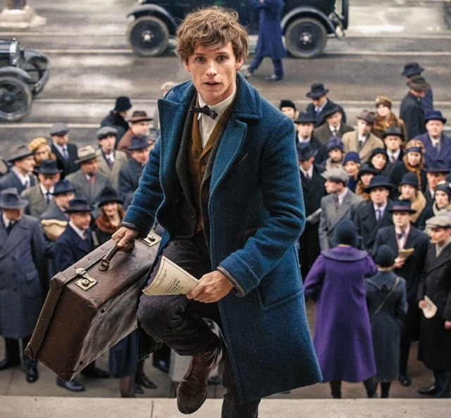 Eddie stars as Newt Scamander in Fantastic Beasts and Where To Find Them Picture: Warner Bros)