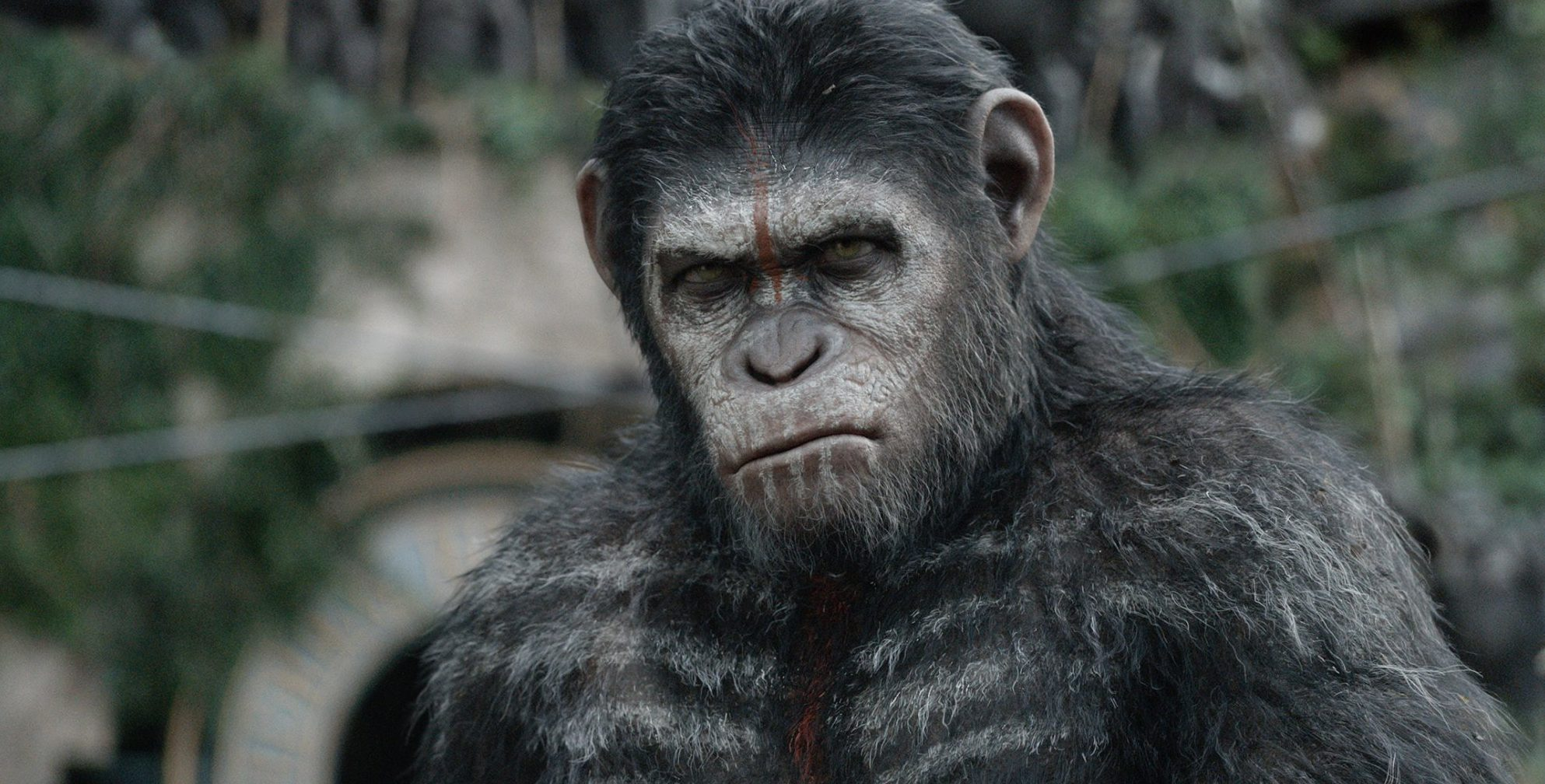 Get ready for more monkey business: First plot details have just emerged for War For The Planet Of The Apes