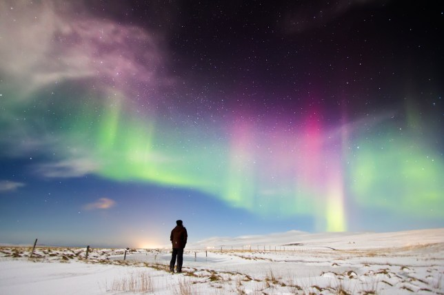 Man looking at Aurora Borealis in north Iceland.Snow covered ground with stars and Northern lights dancing in the sky.