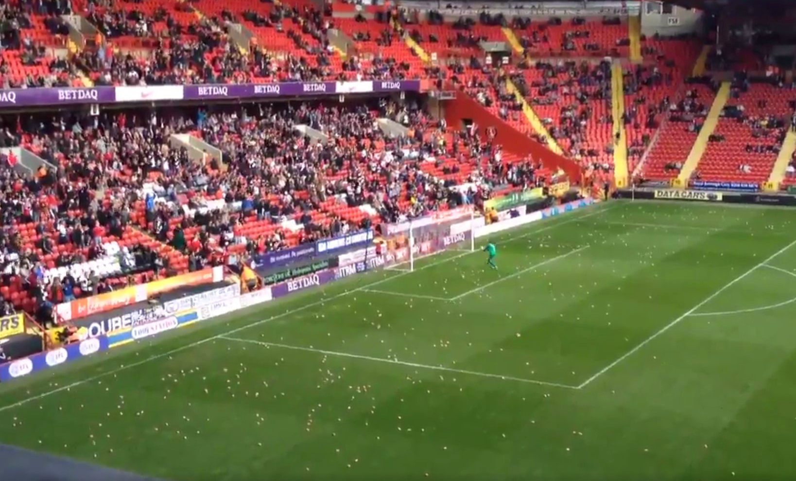 Charlton Athletic v Coventry City stopped due to pigs being on the pitch