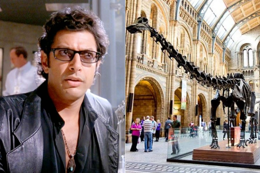 Say goodbye to Dippy with special Jurassic Park screening at the Natural History Museum