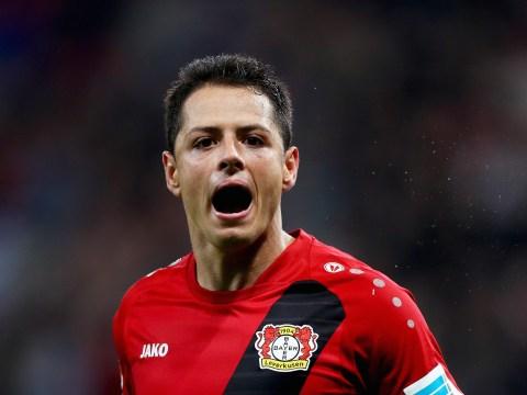 Javier Hernandez 'happy' at Bayer Leverkusen amid Chelsea transfer links