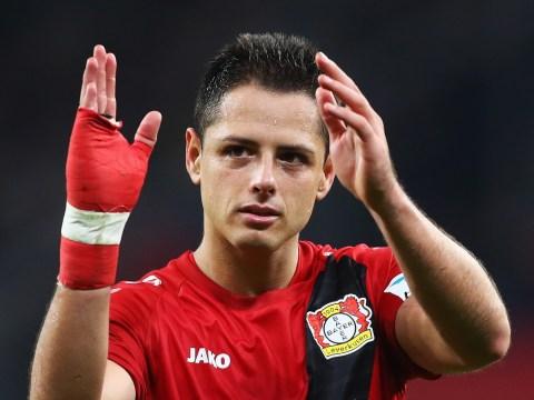 Real Madrid confirm interest in Javier Hernandez