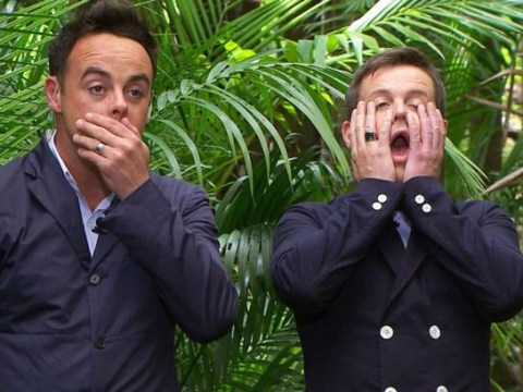 I'm A Celebrity bosses have installed a love cave but there's no one single on the show to use it