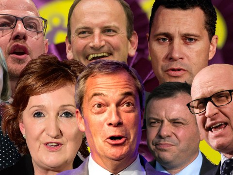 Here's who is most likely to be named new Ukip leader after Diane James quits