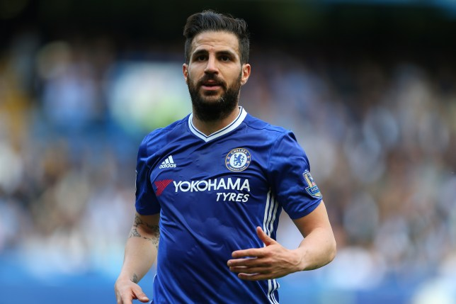 LONDON, ENGLAND - MAY 15: Cesc Fabregas of Chelsea during the Barclays Premier League match between Chelsea and Leicester City at Stamford Bridge on May 15, 2016 in London, England. (Photo by Catherine Ivill - AMA/Getty Images)