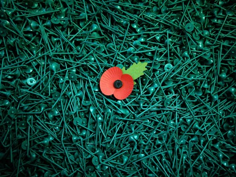 How to wear a Remembrance Day poppy: Why a poppy should be worn on the left side