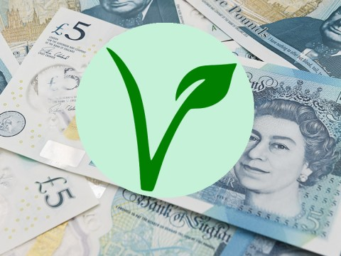 What alternative could Bank of England use to make £5 notes vegetarian?