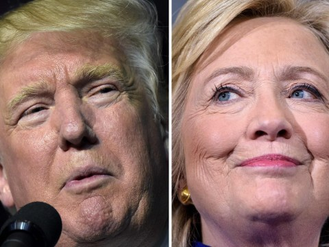 US election polls and odds: Who is winning the presidential race?