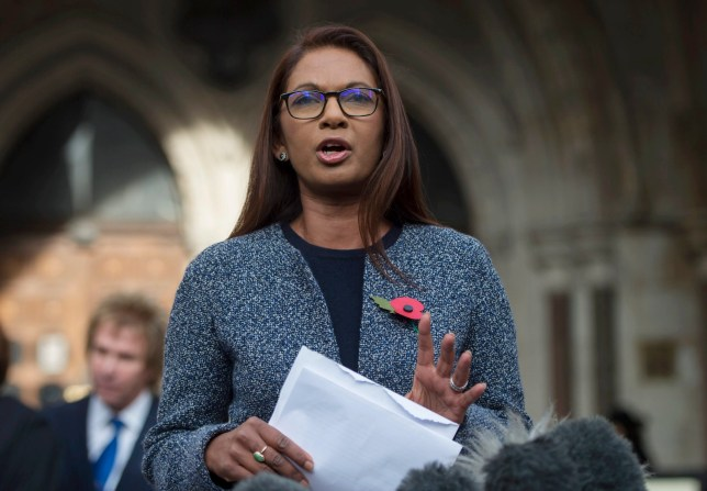 epa05615611 Lead claimant in the Article 50 case, Gina Miller (C), gives a statement outside of the High Court after a decision ruling in her landmark lawsuit in London, Britain, 03 November 2016. In a major blow for Britain's government, the High Court has ruled that the prime minister can't trigger the UK's exit from the European Union without approval from Parliament. EPA/HANNAH MCKAY