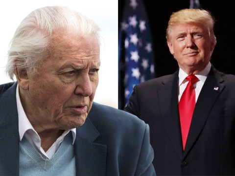 Sir David Attenborough sent death threats after saying 'we could shoot' Donald Trump