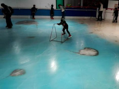 Japan's got an ice skating rink with 5,000 fish frozen inside