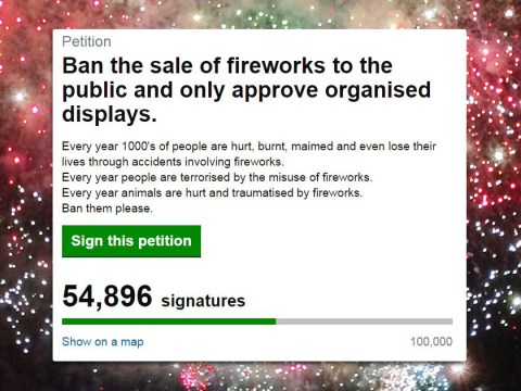 Thousands of people have signed a petition to ban fireworks