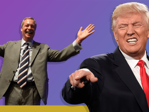 Nigel Farage says he could be Donald Trump's ambassador in the EU