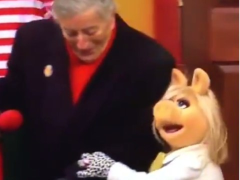 WATCH: Miss Piggy saves Tony Bennett's bacon as he stumbles on Thanksgiving parade float