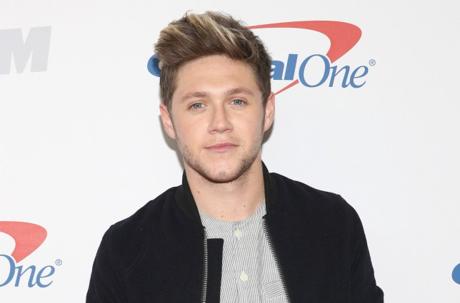 niall-horan-one-direction-capital-one