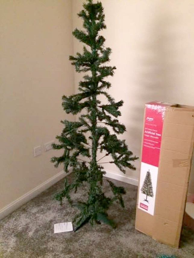 Argos Christmas Tree Leaves Mum Completely Disappointed Metro News