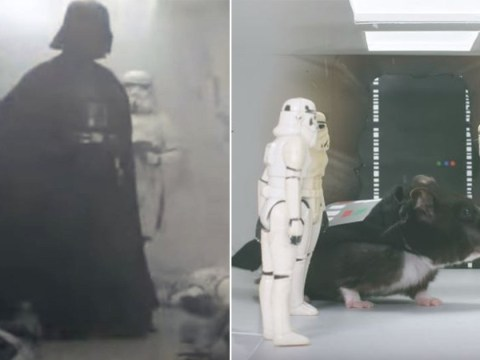 WATCH: Some clever people have remade Star Wars: A New Hope with hamsters
