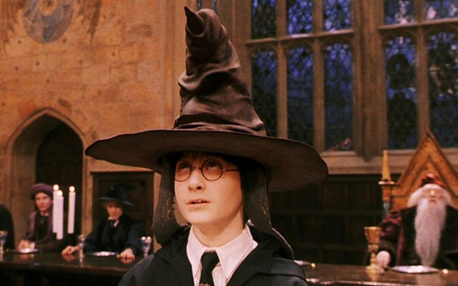 Researchers have found a spider that looks just like a sorting hat Credit: Warner Bros.