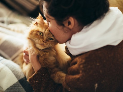 12 reasons why mad cat ladies make the best girlfriends