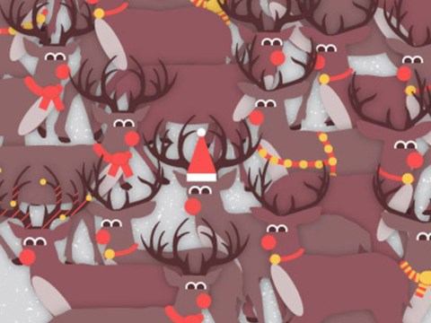 Can you find the robin in the herd of reindeer?