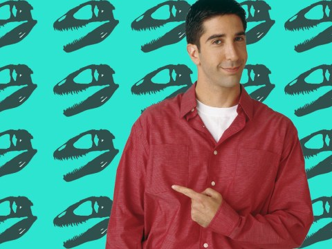Friends' very own Ross Geller has his own review page on the Rate My Professors website