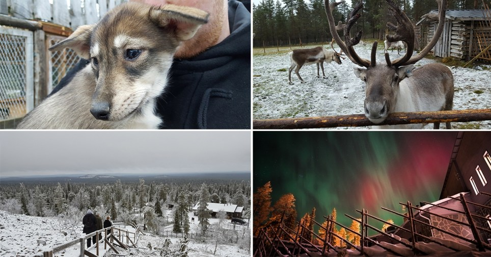 Forget Christmas – Lapland is magical place to visit all year round (we got the proof) (Sarah Musgrove)
