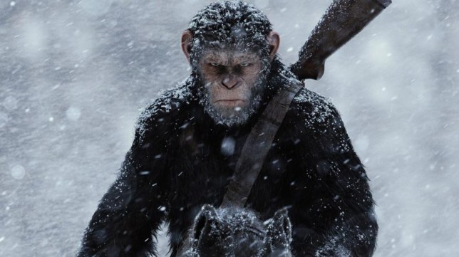 Caesar returns in War For The Planet Of The Apes (Picture: 20th Century Fox)
