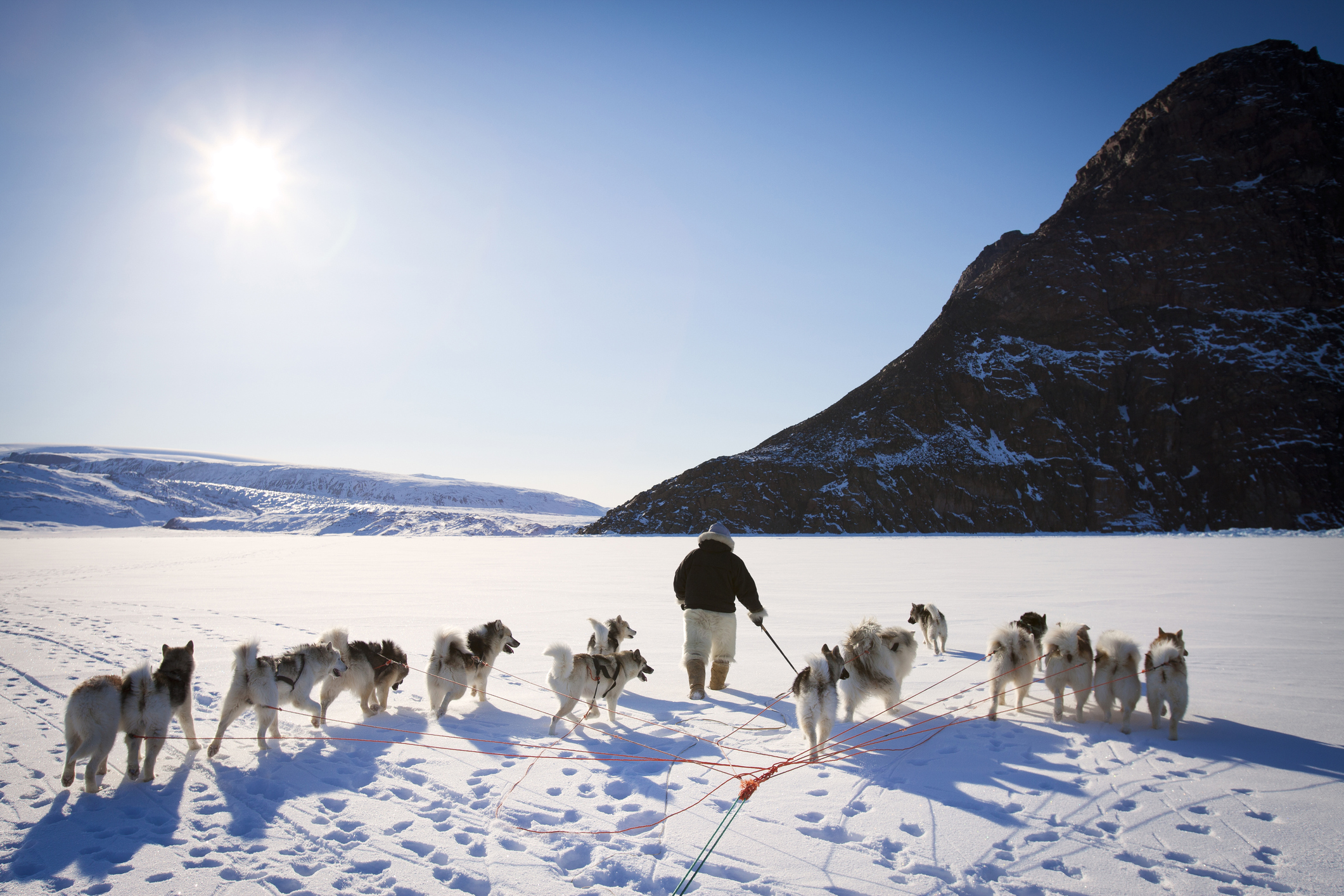 9 facts that'll make you want to visit Greenland right now
