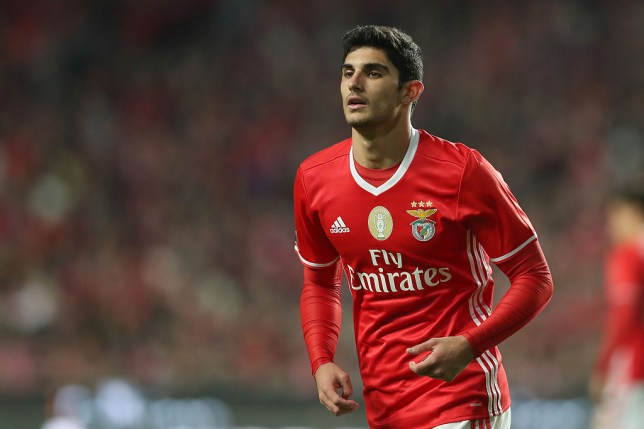 LISBON, PORTUGAL - NOVEMBER 27: Benfica's forward Goncalo Guedes from Portugal during the match between SL Benfica v Moreirense FC - Primeira Liga at Estadio da Luz on November 27, 2016 in Lisbon, Portugal. (Photo by Carlos Rodrigues/Getty Images)