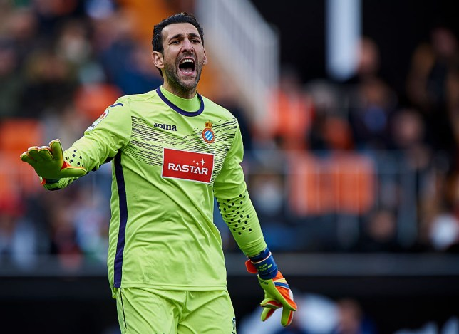 VALENCIA, SPAIN - JANUARY 15: Diego Lopez of Espanyol reacts during the La Liga match between Valencia CF and RCD Espanyol at Mestalla Stadium on January 15, 2017 in Valencia, Spain. (Photo by fotopress/Getty Images)