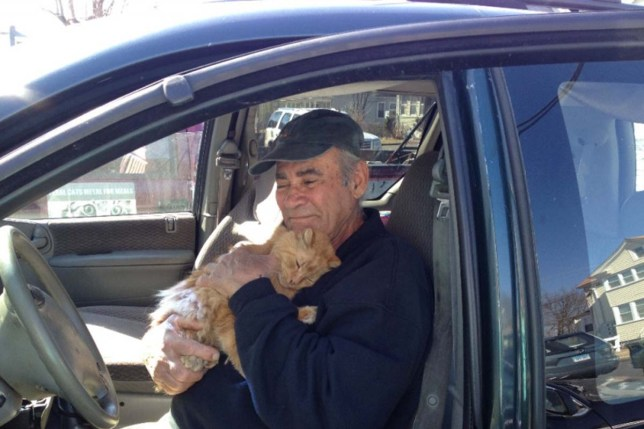 This man has been feeding stray cats every day for the last 22 years Credit: GoFundMe