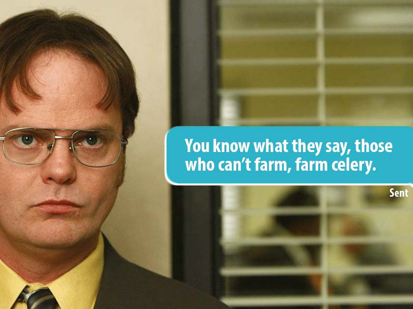 Girl trolls her Tinder match using Dwight Schrute quotes from The Office