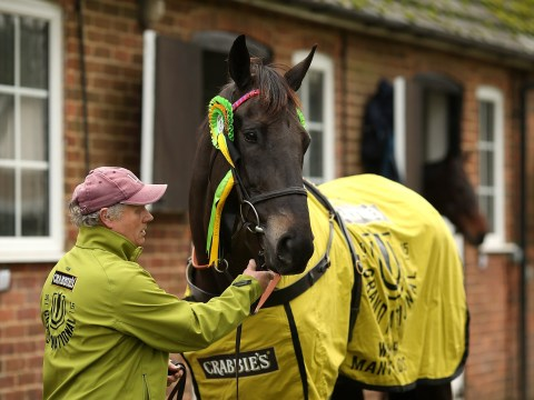 Former Grand National champion collapses and dies after win