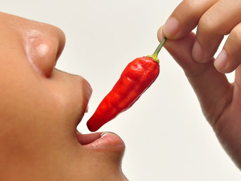 Hot chillies could hold the key to beating breast cancer