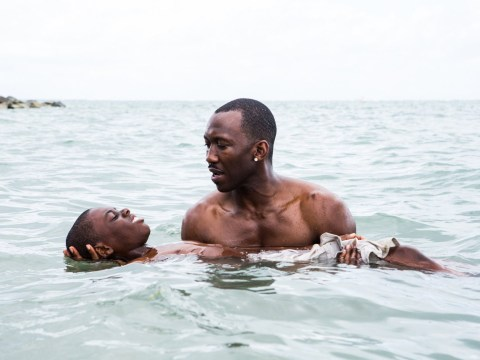 What is Moonlight about? Everything you need to know about the Oscar Best Picture winner
