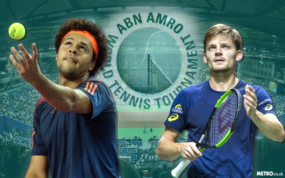 ATP Rotterdam Open final preview: David Goffin v Jo-Wilfried Tsonga