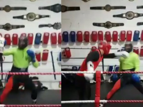 Conor McGregor focusing on reflexes in boxing training ahead of potential Floyd Mayweather fight