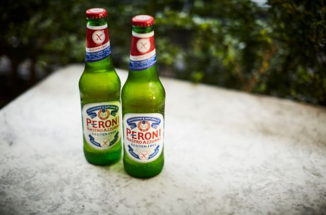 peroni launches gluten free beer