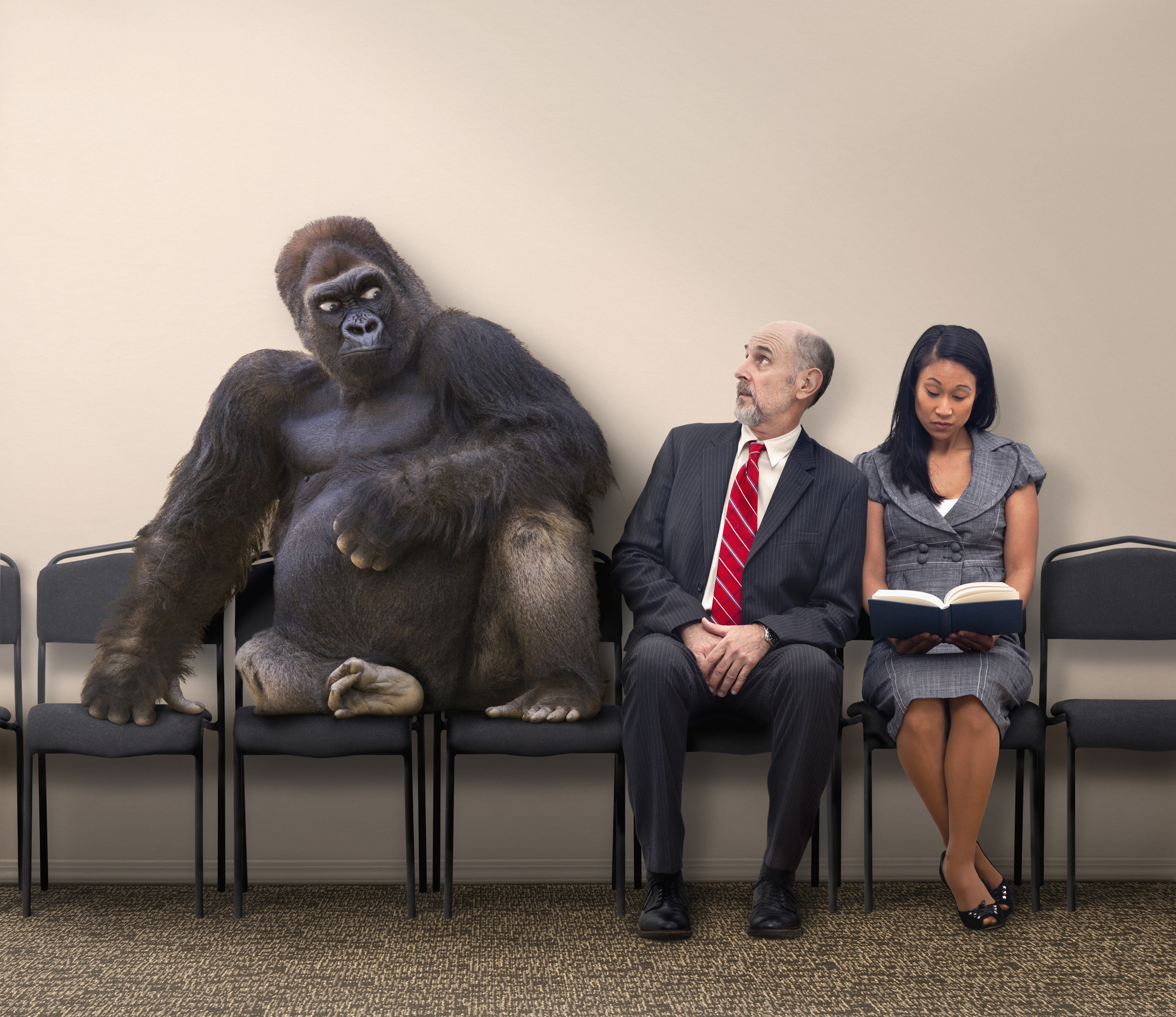 gorilla next to two people