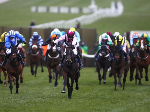 Cheletenham Festival Day 1: Champion Hurdle schedule, runners, odds, previous winners and TV channel