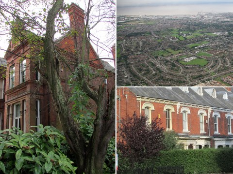 Town is declared the garden capital of Britain