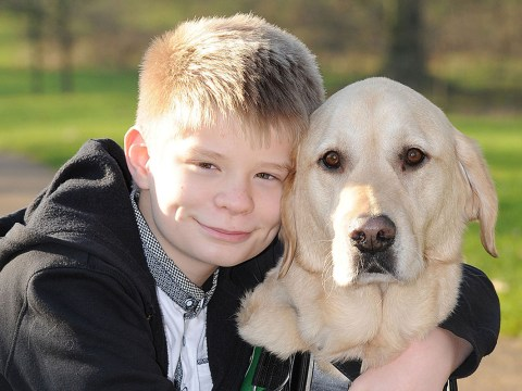 Boy with autism hopes his 'guardian angel' dog wins hero category at Crufts