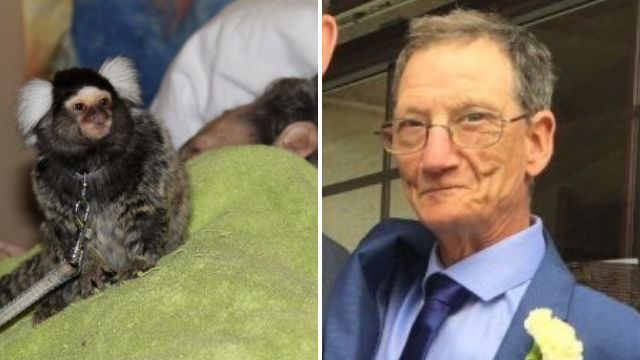 Cancer patient spends final hours with monkey to fulfil wish of a lifetime