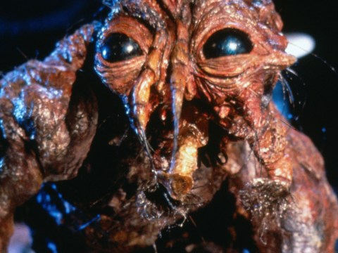 Sci-fi horror classic The Fly is apparently heading for a big screen remake without David Cronenberg