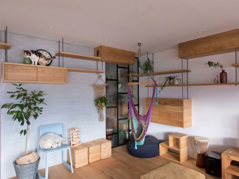 This apartment in Japan has been designed to be super cat-friendly