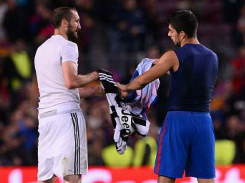 Giorgio Chiellini and Luis Suarez swap shirts after Juventus knock Barcelona out of Champions League
