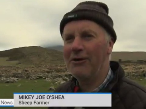 Can you translate what this Irish farmer is saying?