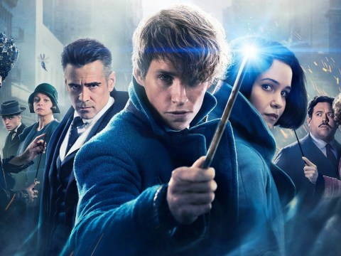 How to join the cast of Fantastic Beasts And Where To Find Them 2