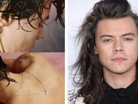 Harry Styles drops May album release date and 'naked' album cover